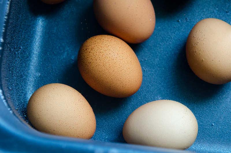 Pasteurisieren Ei