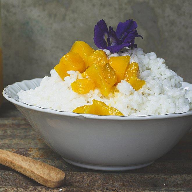 Amazake mit Reis Koji selber machen