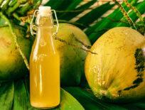 Kokosessig selber machen - Kokoswein fermentieren